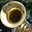 Playing Marching Tuba in Parade — Stock Photo