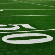 Fifty Yard Line on American Football Field — Stock Photo #6633272