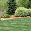 Backyard Landscaping - Stock Photo