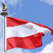 Austrian Flag — Stock Photo