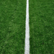Fifty Yard Line on American Football Field - Foto Stock