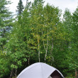 Tent at Campsite in the Wilderness — Foto de Stock