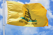 Gadsden Flag — Stock Photo