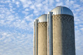 Two Concrete Stave Silos — Stock Photo