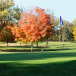 Golf Green and Flagstick with Colorful Fall Leaves — Stock Photo