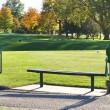 Golf Tee Box and Bench - Stock Photo