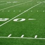 Twenty Yard Line on American Football Field — Stock Photo #6642370