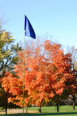 Golf Flagstick with Colorful Fall Leaves — Stock Photo