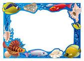 Underwater frame — Stock Photo