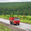 Red truck — Stock Photo #5932303