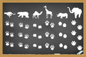Animals footprints on blackboard — Stock Vector