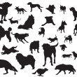 Royalty-Free Stock Vector Image: Dogs silhouette set