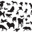 Stock Vector: Dogs silhouette set