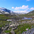 Beautiful Norway mountain landscape — Stock Photo #5933358