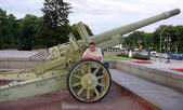 A guy and old cannon — Foto Stock