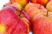 Jablka macspur — Stock fotografie