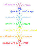 Colored flowers in chakra column — Stock Photo