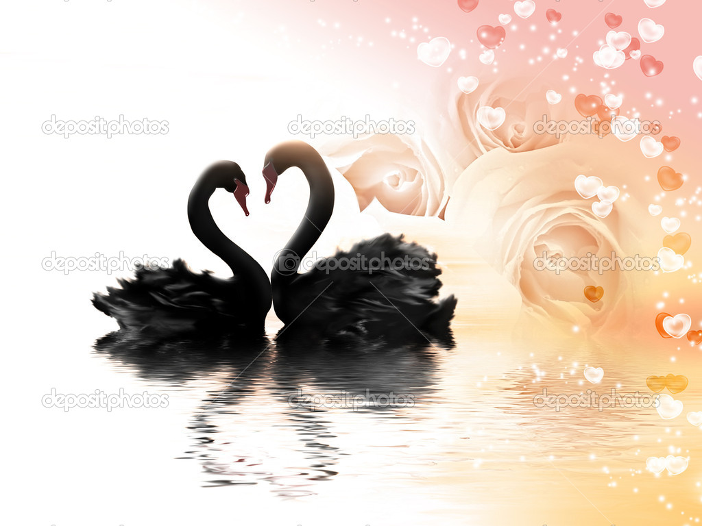 Romantic card with flowers, hearts and a pair of black swans — Stock Photo #6126264