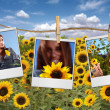 Film Shots Hanging in a Field of a Beautiful Red Head Woman — Stock Photo
