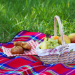 Picnic basket - Stock Photo