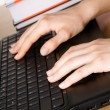 Stock Photo: Hands of a woman working at her laptop