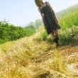 Beautfiul woman in checkered dress in a field — Stock Photo