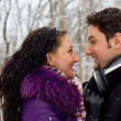 Stock Photo: Young happy couple in winter park