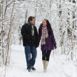 Young couple walking in winter park — Stock Photo