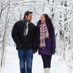 Winter romance — Stock Photo #5727434
