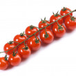 Branch of small tomatos — Stock Photo