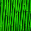 Royalty-Free Stock Photo: Green bamboo texture
