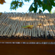 Bamboo roof closeup - Stock Photo