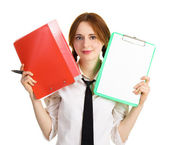 Business girl with a folder and a worksheet — Stock Photo
