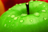 Fresh green apple macro photo — Stock Photo