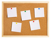 Corkboard on white background — Stock Photo