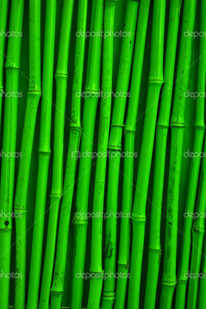 Green detailed bamboo texture  Stock Photo #5728810