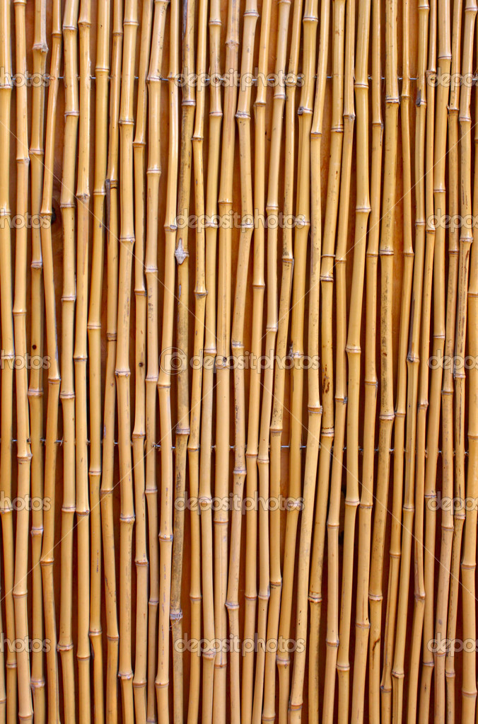 Natural detailed bamboo texture — Foto de Stock   #5729534