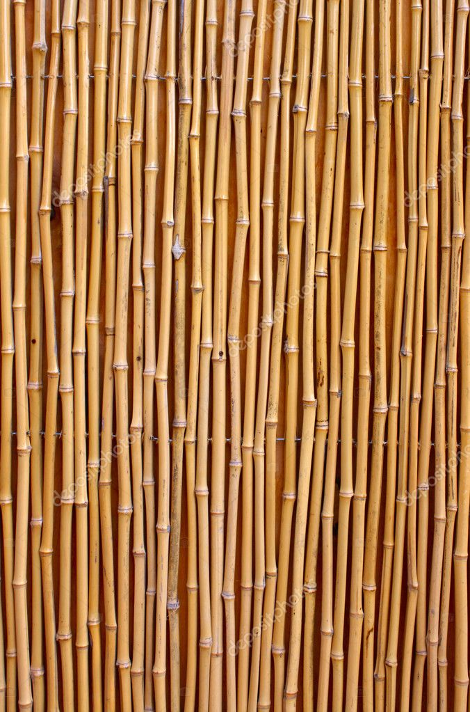 Natural detailed bamboo texture  Foto Stock #5729534