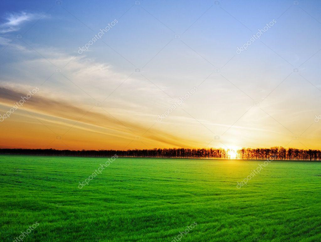 Фотообои Солнце садилось за красивый пейзаж