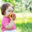 Cute child on a picnic — Stock Photo #5757906