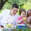 Young family of three on a picnic — Stockfoto