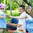 Young family of three on a picnic — Stock Photo #5757916