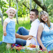 Young family of three on a picnic — Stock Photo #5757917