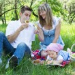 Stock Photo: Young family of three on a picnic