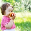 Cute child on a picnic — Stock Photo