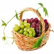 Wicker basket with grapes - Stock Photo