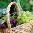 Bottles of red and white wine with grapes — Stock Photo #6097413