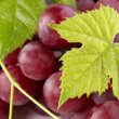 Red grapes with green leaves — Stock Photo