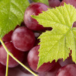 Red grapes with green leaves — Stock Photo #6097935