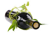 Bottle of wine in green leaves — Stock Photo